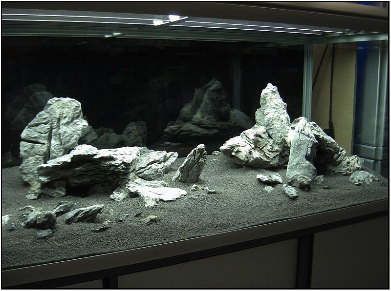 оказал воздействие дизайн аквариума с камнями фото подтверждение, что тик-ток